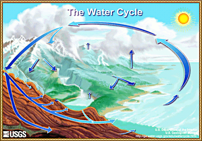 We will learn about so many topics in Science this year, from the water cycle to human impact and more.